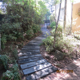 <h5>Pathway</h5>