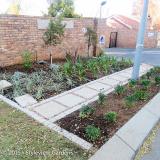 <h5>Pavement garden</h5>