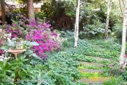 <h5>Azalea Pathway</h5>