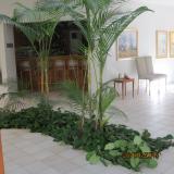 <h5>Indoor Garden</h5>