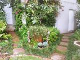 <h5>Forest Town Garden</h5>