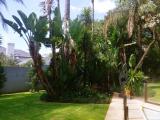 <h5>Morningside Garden</h5>